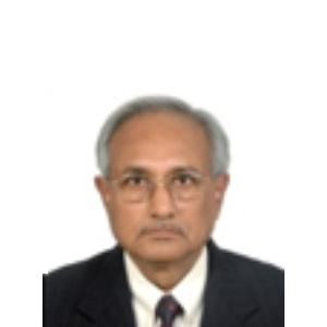 Shri B. Majumdar